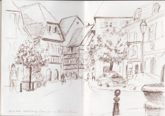 Wissembourg_choux.jpg