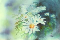 Bouquet blanc D.jpg